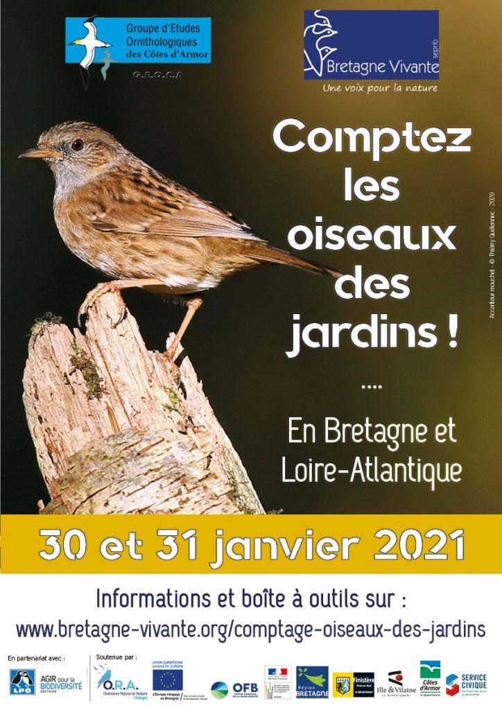 13ème comptage des oiseaux des jardins en Côtes d'Armor: les 30 & 31 janvier 2021